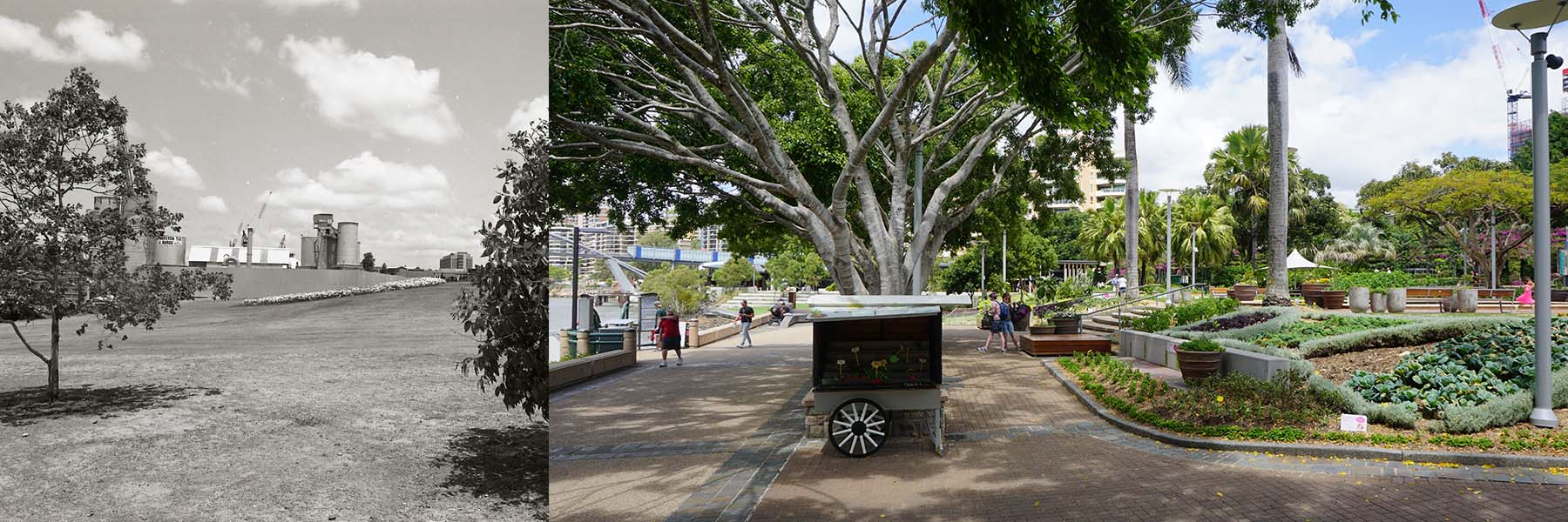 Clem Jones Gardens (From Stanley Street) 1982 and 2015